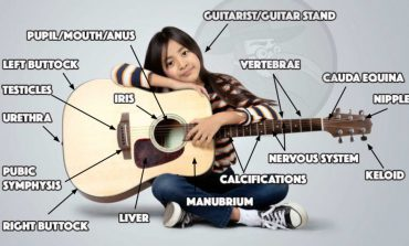 Anatomy of a Guitar
