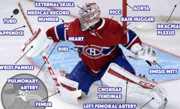 Anatomy of an NHL Goalie