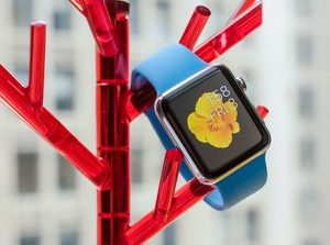 Apple Watch review     - CNET