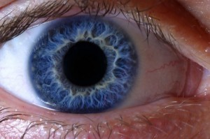 Ophthalmologist Palpates Retina with Finger As Part of Dilated Eye Exam