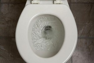So You Dropped Your Pager into the Toilet, What to Do Next