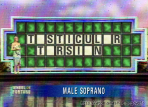 Pat Sajak, Vanna White to Host New Urologic Game Show, Wheel of Foreskin