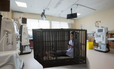 Intern Put Into Timeout Cage to Think About What She Did