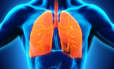 Respiratory System Secedes, Declares Independence from Human Body
