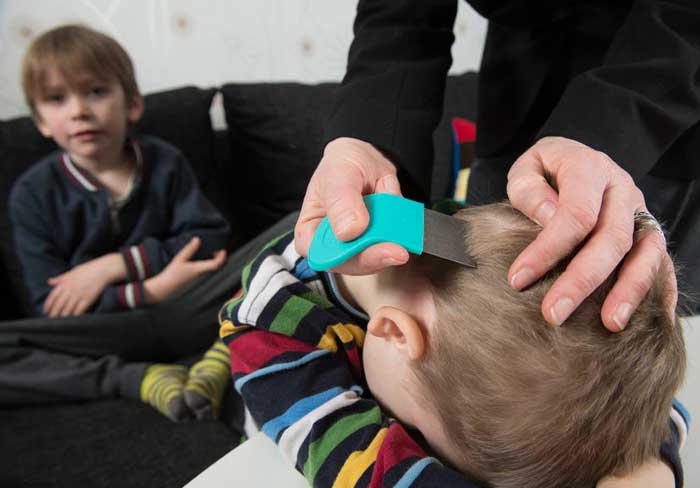 Frantic Mom Hires Exterminator to Rid Son's Head of Lice